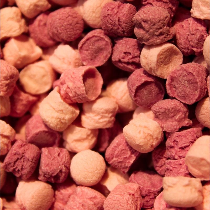Pastilles Léone fruits des bois.