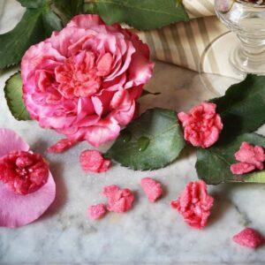 Roses d'amour - fleurs naturelles